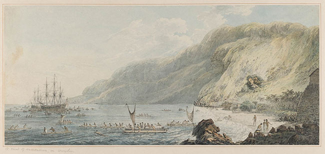 John-webber-hawaii-resolution