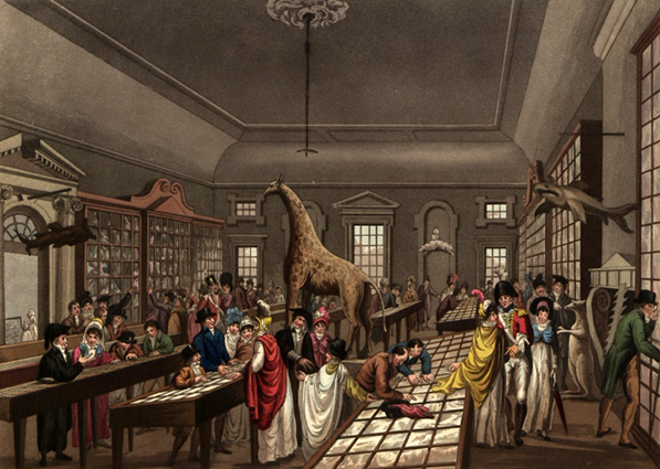 Dublin-museum-1819